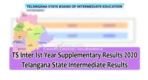 BIETS Supplementary Results 2020